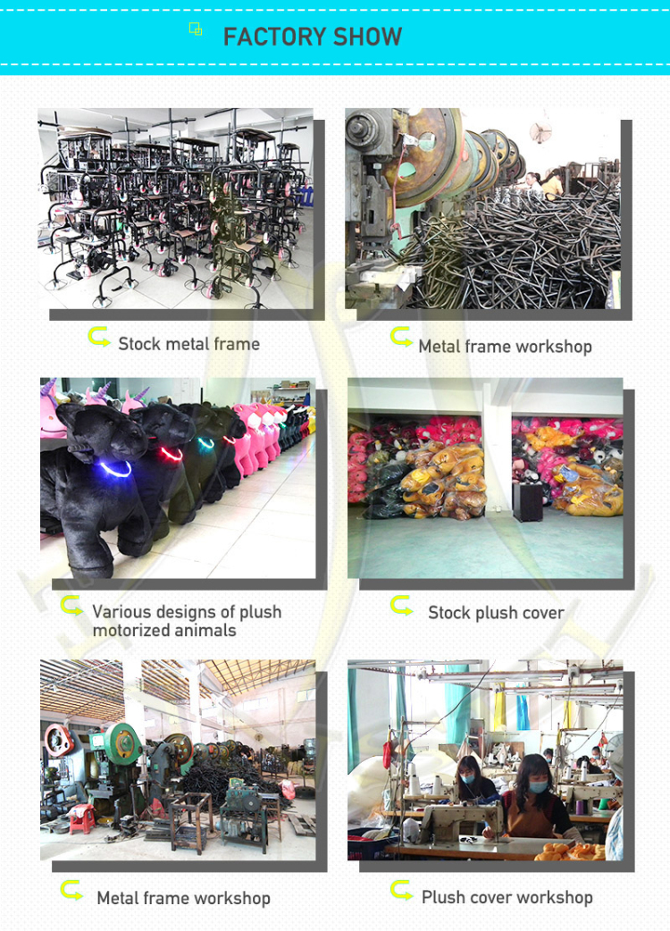 animal rides workshop.jpg
